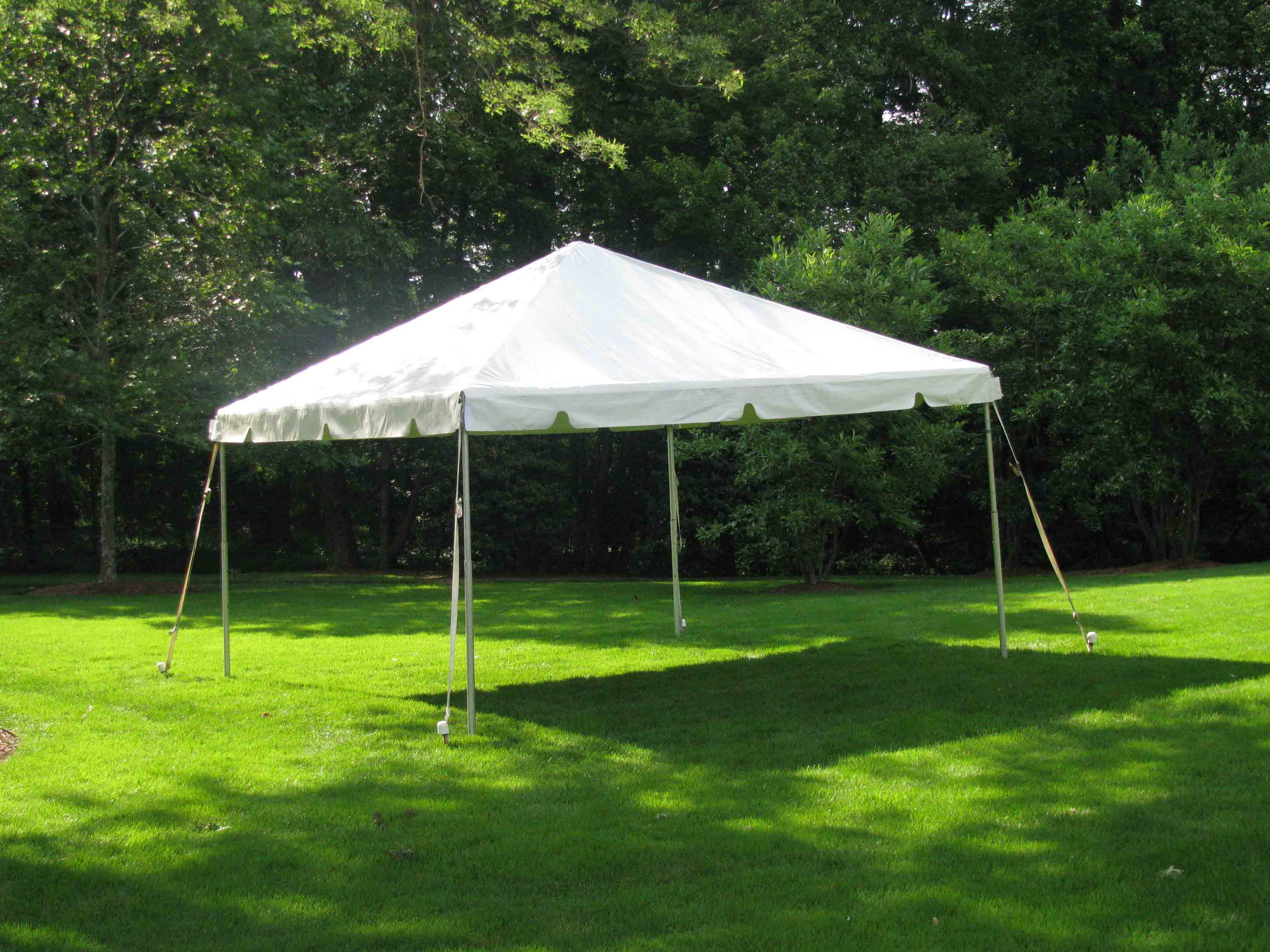 Canopy 10u0027 ... & Tents Canopies and Umbrellas - Affordable Linen